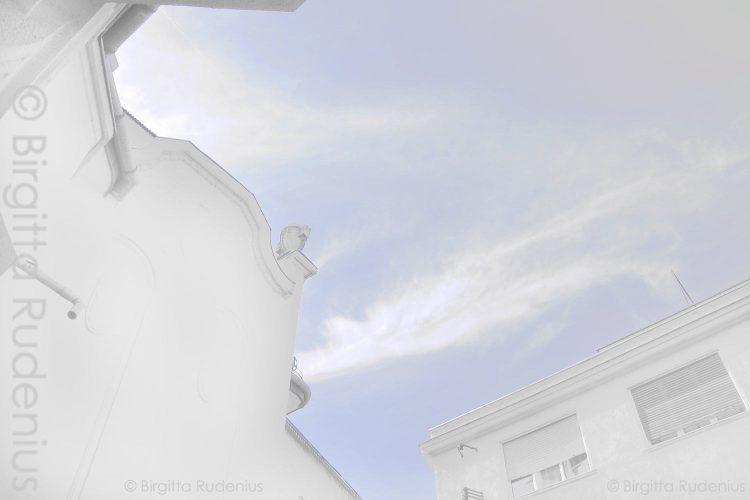 bg_20120911.jpg