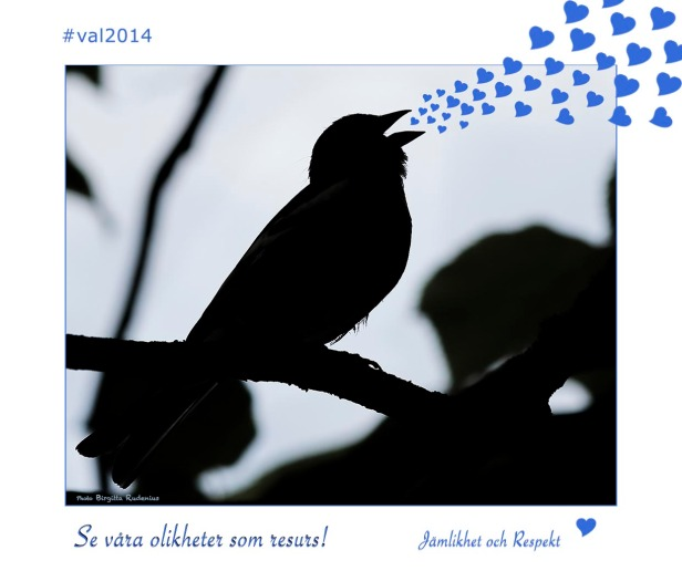 card_20140705_val2014