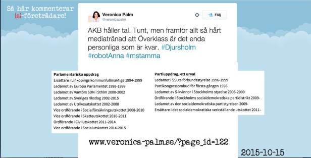 Veronica Palm en socialdemokrat