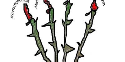 Hatets rötter - Kommunism Nazism Nationalsocialism Feminism Fascism