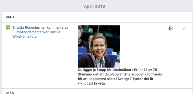Cecilia Wikström (L) och alla sidoinkomster.