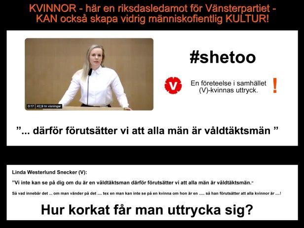 Vänsterkvinnor - Vänsterpartiet (v) - ser alla män som våldtäktsmän.